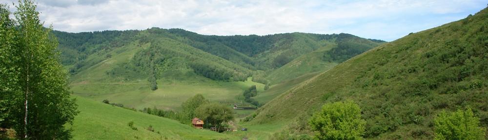 Земельный участок под усадьбу в Горном Алтае